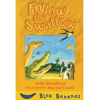 Follow the Swallow: Childrens book
