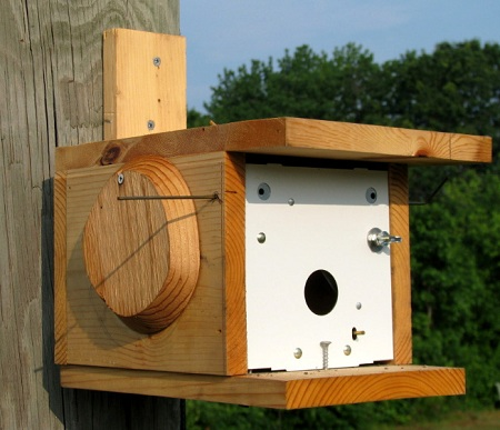 Purple Martin Trio Spare-O-Door Trap Plans