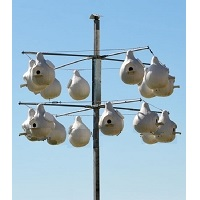 Lone Star Gourd Rack System (16 gourd capacity)