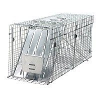 Raccoon Trap (collapsible)