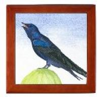 Keepsake Purple Martin Box