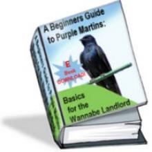 Purple Martins E-Book Download